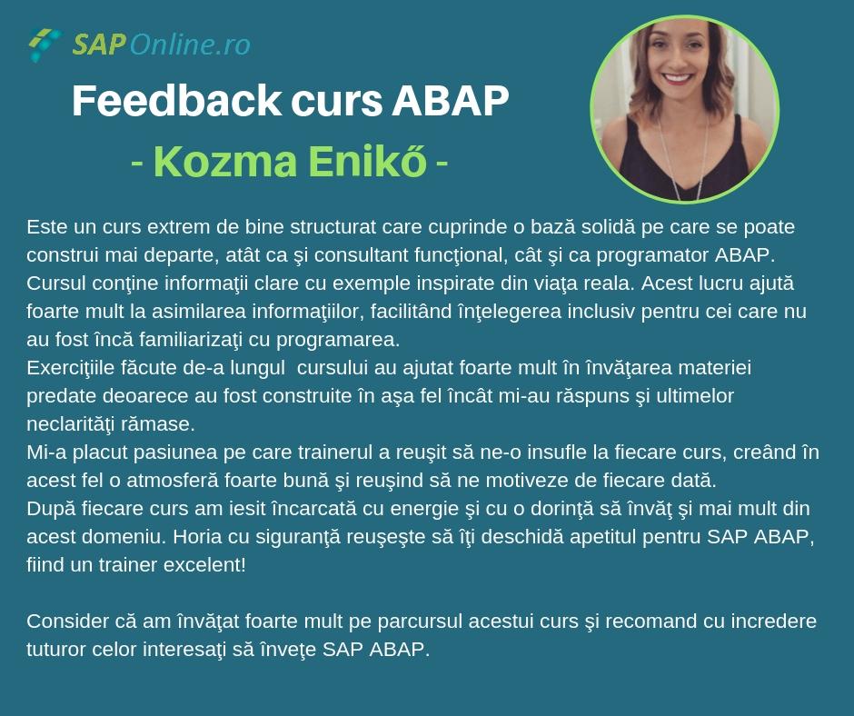 feedback_kozma